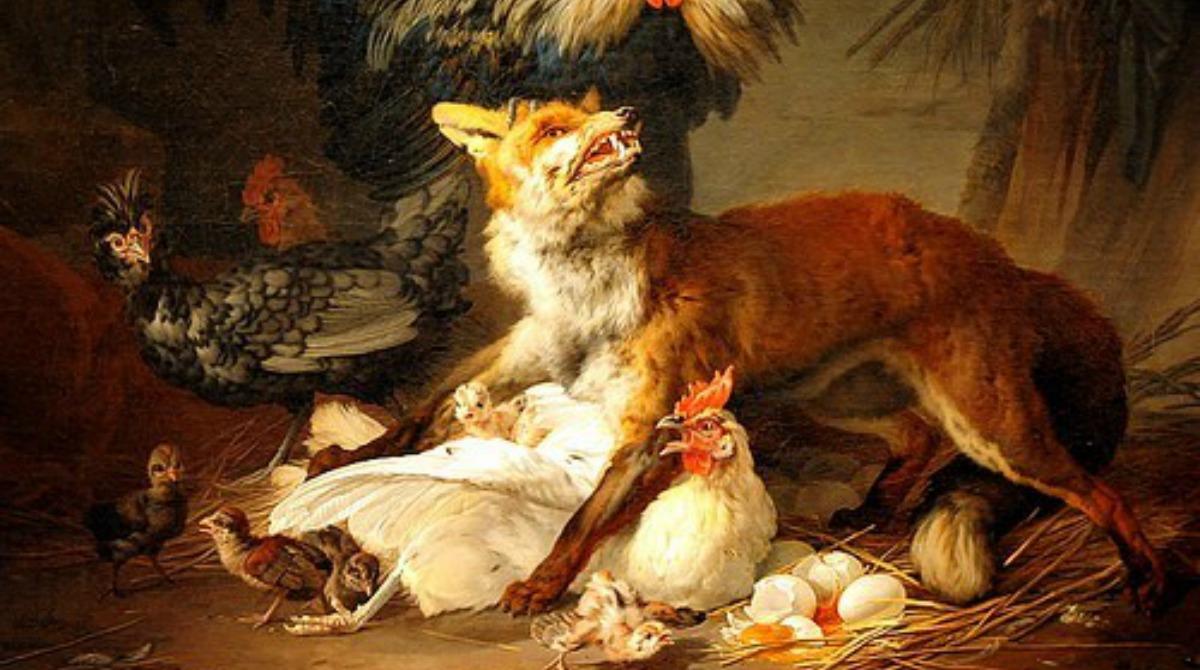 fox-in-henhouse
